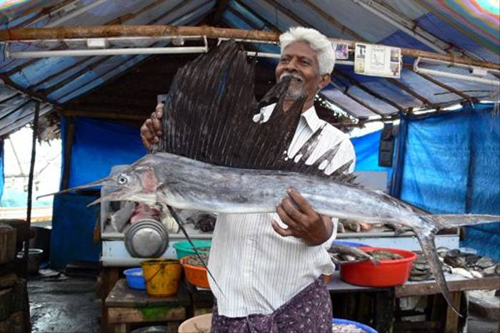 Fishmonger, southern India (Tim Melling)