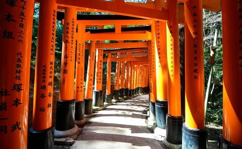 Japan - Crimson torii gates over a path -AdobeStock_107329895.jpeg