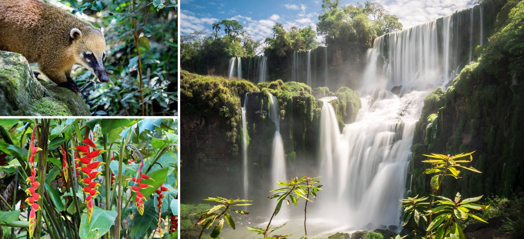 22 Day - Iguazu Falls - Hotel stay - Itinerary Desktop  Copy.jpg