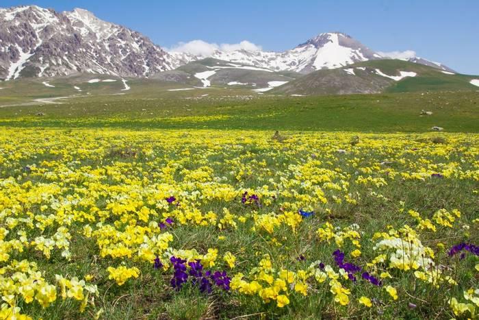 Campo Imperatore plateau, apennine mountains, abruzzo, italy shutterstock_278760974.jpg