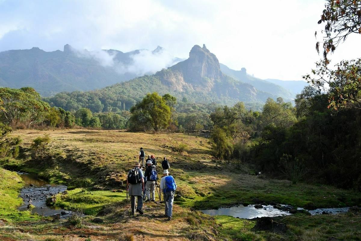 Walking From Bale Mountain Lodge (Helen Pinchin)