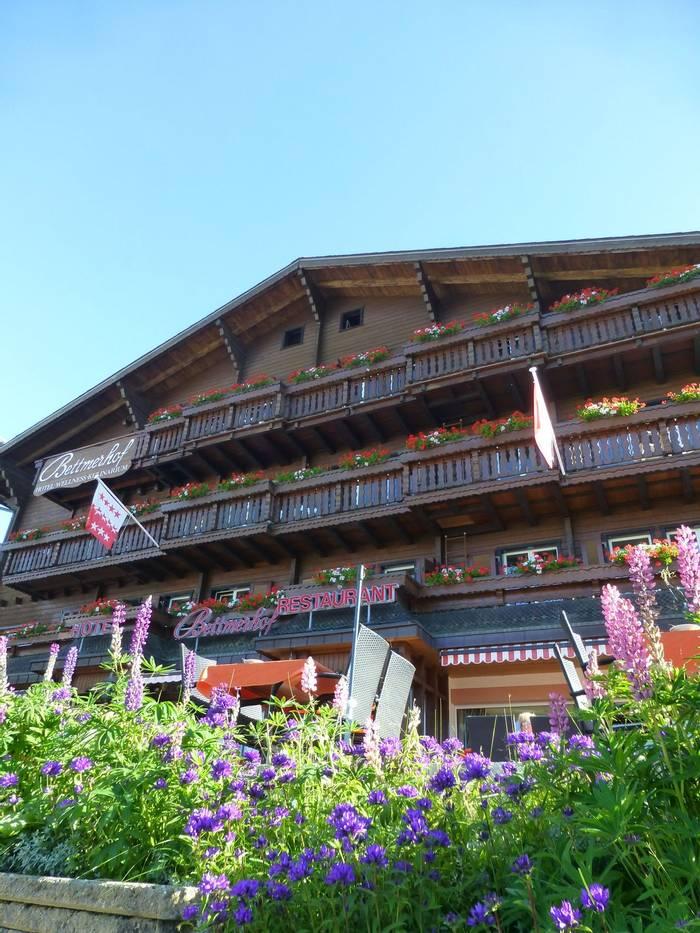 Hotel Bettmerhof  (Kerrie Porteous)