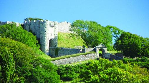 Isle of Wight Gardens Tour