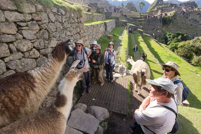 Group at Machu Picchu (Tom Ambrose)