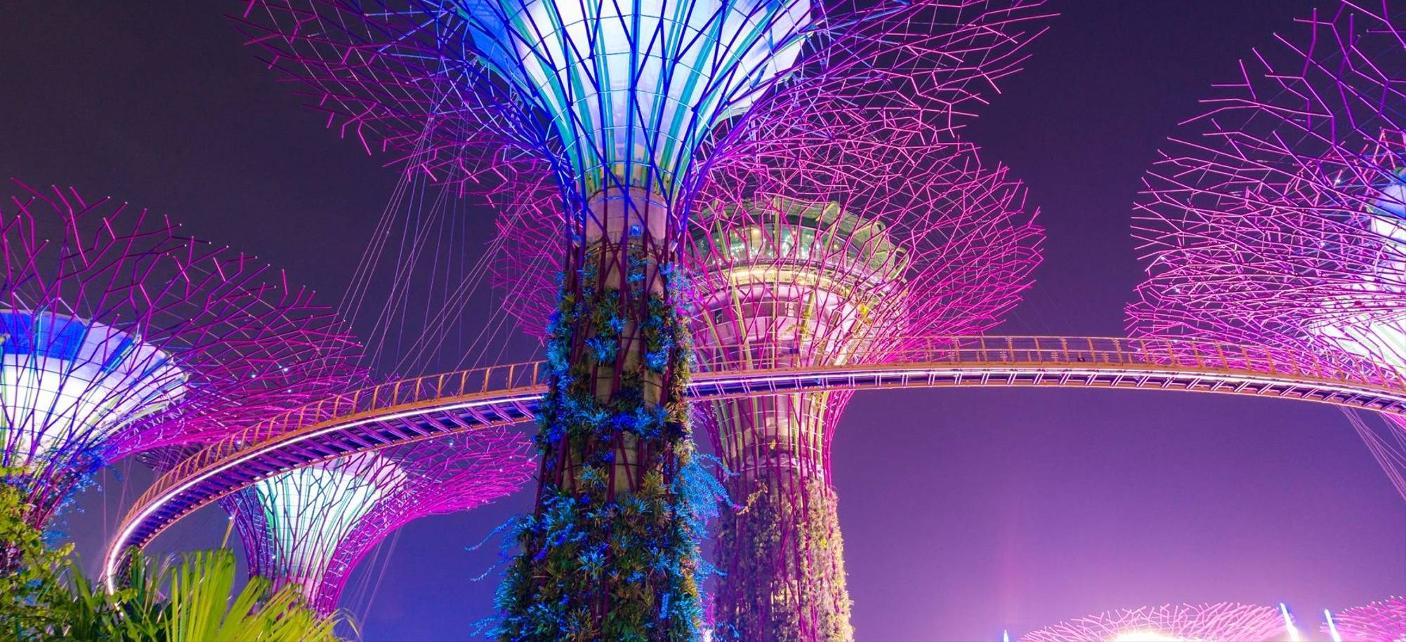Singapore   Gardens By The Bay   Itinerary Desktop 6