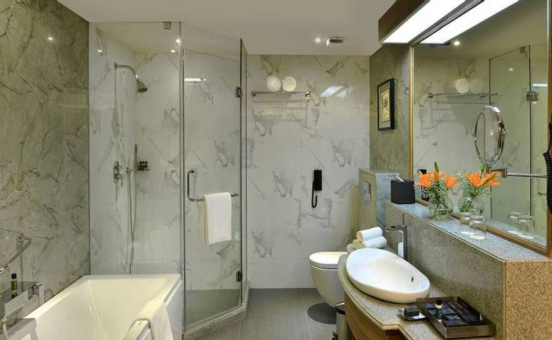 Rajasthan - Indana Palace, Jaipur - Executive bathroom.jpg