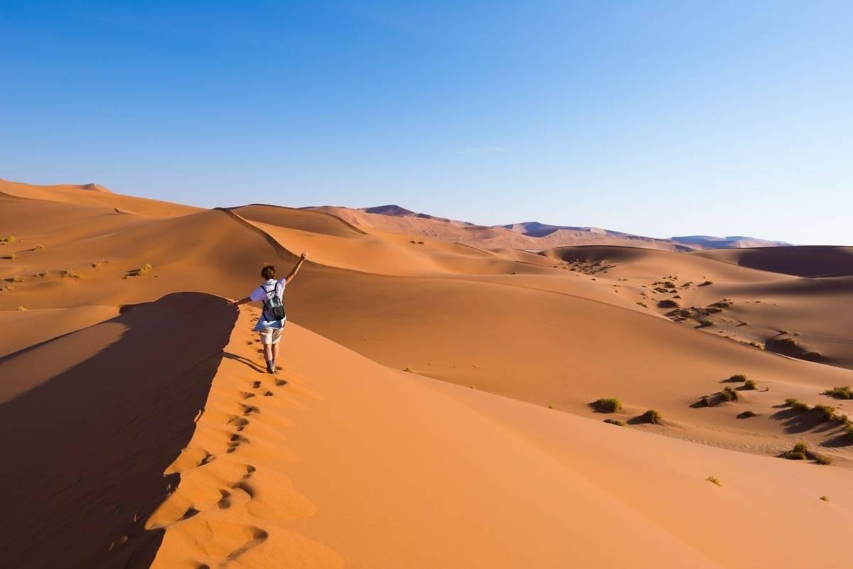 Tourist walking on the scenic dunes of Sossusvlei, Namib desert, Namib Naukluft National Park, Namibia. Afternoon light. Adv…