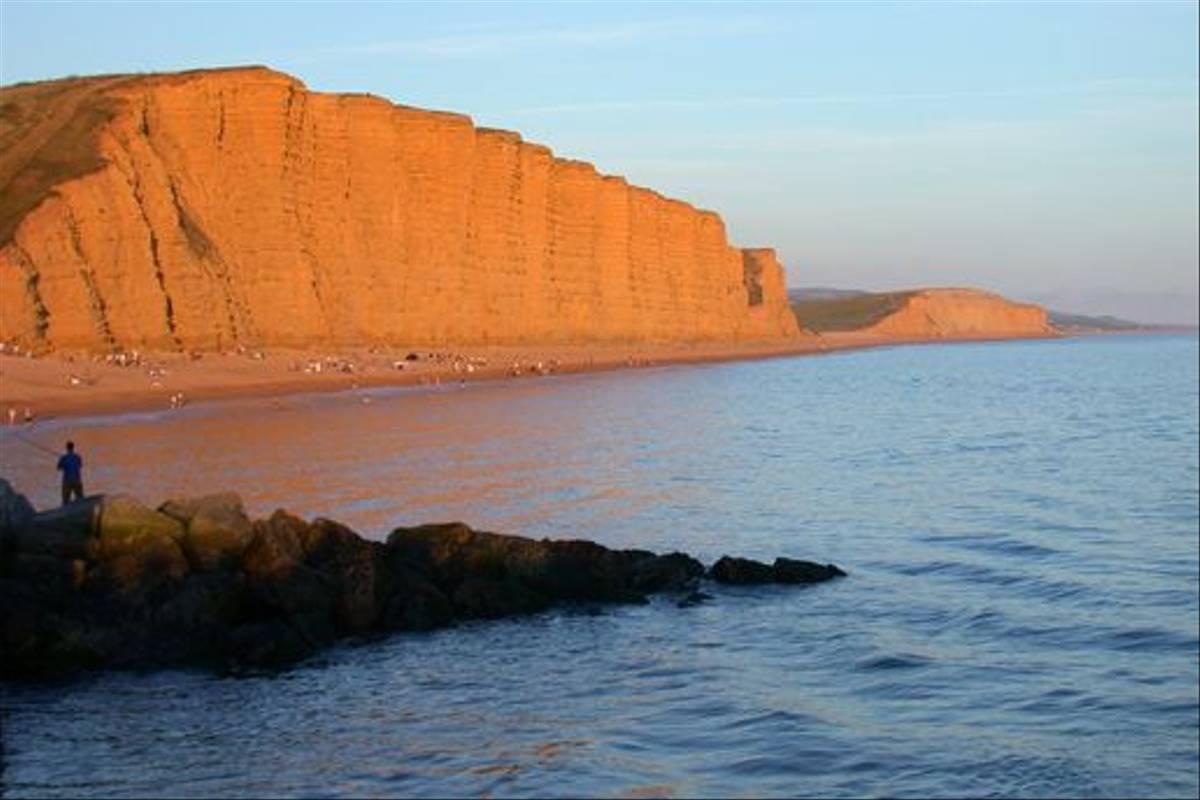 Dorset cliffs (Tom Brereton)