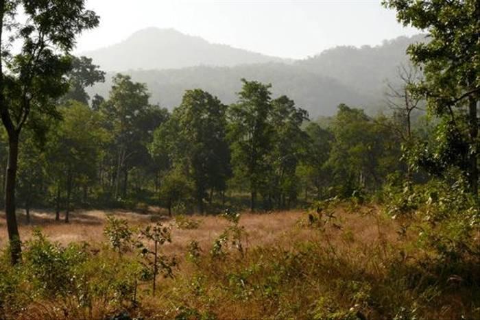 Classic Satpura scenery