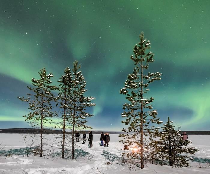 Northern Lights  (Ann Miles) (2)