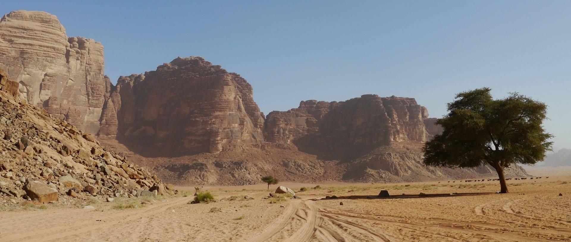 The remote desert of Wadi Rum.JPG