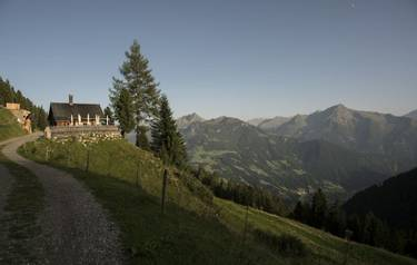Mountain panorama in the Zillertal in Austria with house and tree