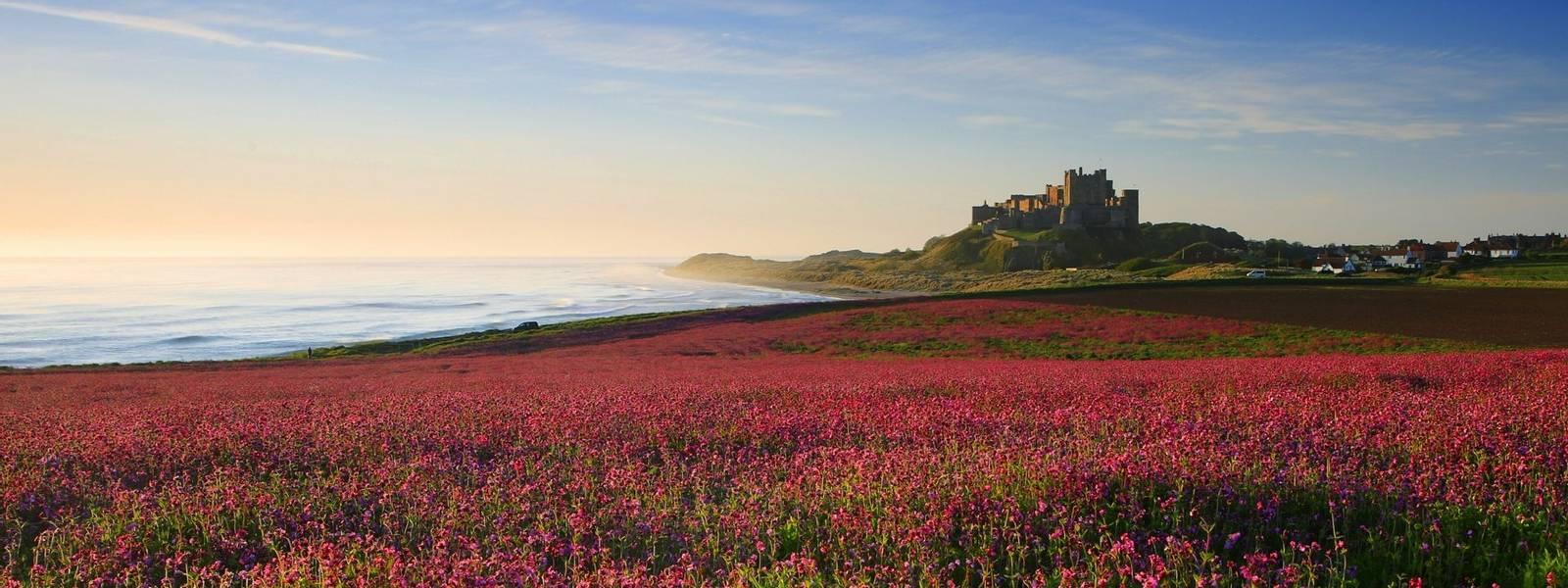 Northumberland_Bamburgh_Castle_AdobeStock_249566495.jpeg