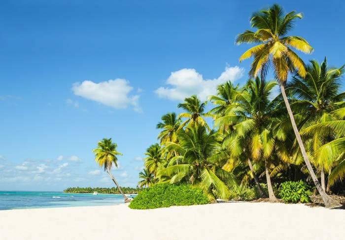 Jamaican Beach Shutterstock 198067640