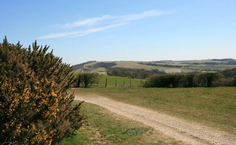 View South East from South Downs Way.JPG