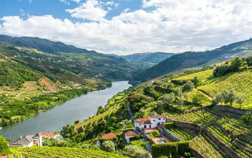 Douro Valley Guided Walking Holiday