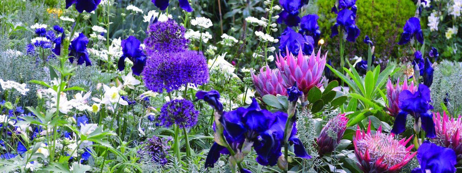 South Wales & the Welsh Borders Garden Tour.jpg