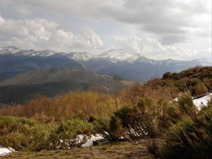 Palencia scenery (Thomas Mills)