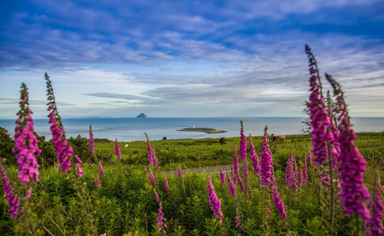 Arran Islay Jura - Island Hopping - Arran - AdobeStock_90581696.jpeg