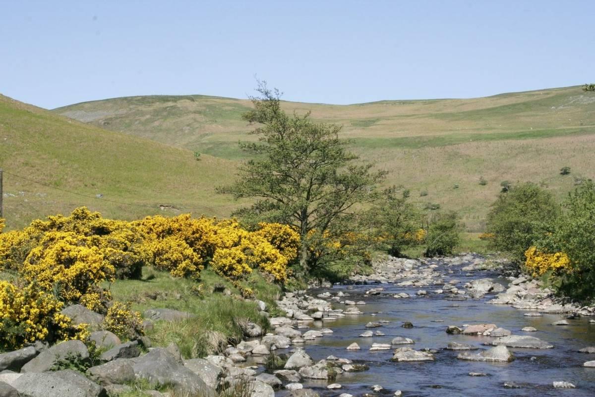 Northumberland_Breamish_Valley_AdobeStock_3051129.jpg