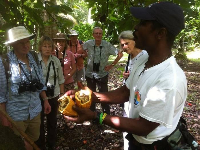 Tasting cocoa beans (Ed Drewitt).jpg