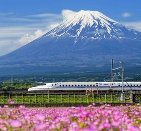 Tokyo - Hotel Stay & Tour