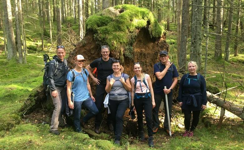 Sweden - In the forest between Skatås and Jonsered - Tourist Board Image.jpg