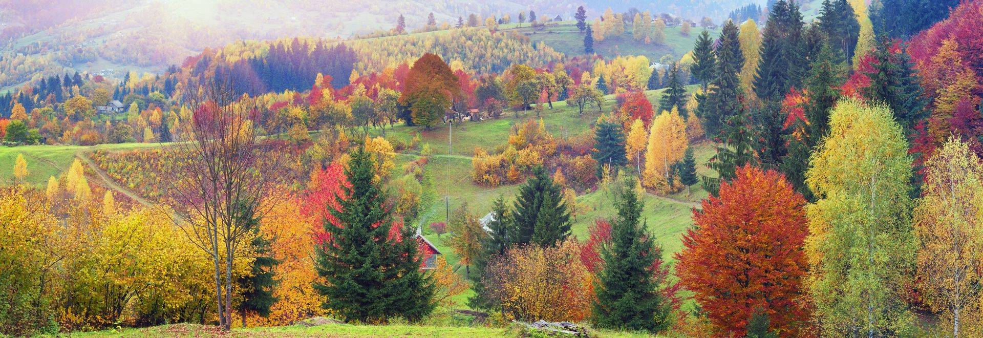 Ukraine Karpaty mountain village against the backdrop of the Hutsul mountaineers deciduous and coniferous forests and wildli…