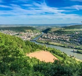 Rhine Gorge and Rüdesheim