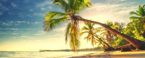 Brazilian Charms & Miami Stay
