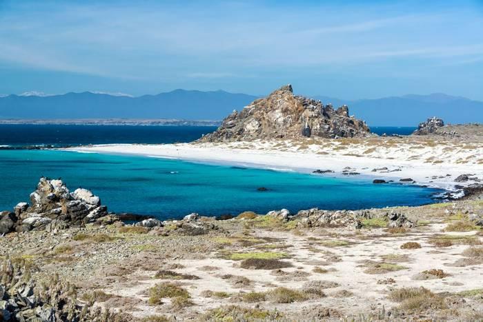 Damas Island near La Serena, Chile