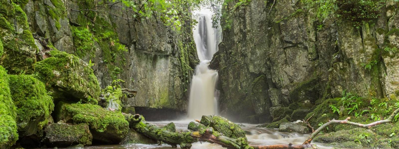 Southern Yorkshire Dales - Gentle Guided - AdobeStock_265223788.jpeg