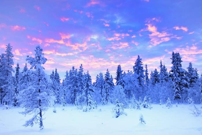 Sunrise, Swedish Lapland shutterstock_161568269.jpg