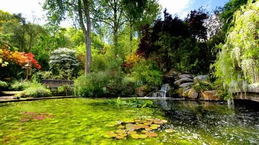 Cornwall Garden Tour