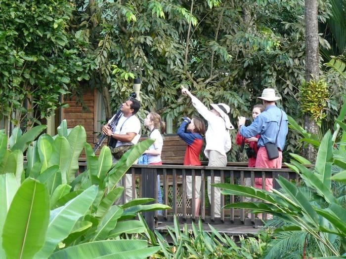 Birding group at Pico Bonito