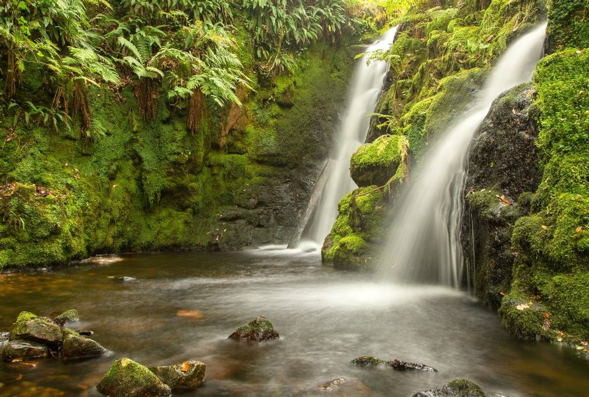 Venford Falls (© Robert Harvey)