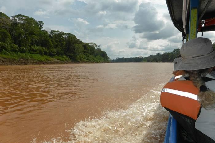 Rio Tambopata (Robert Davidson).JPG