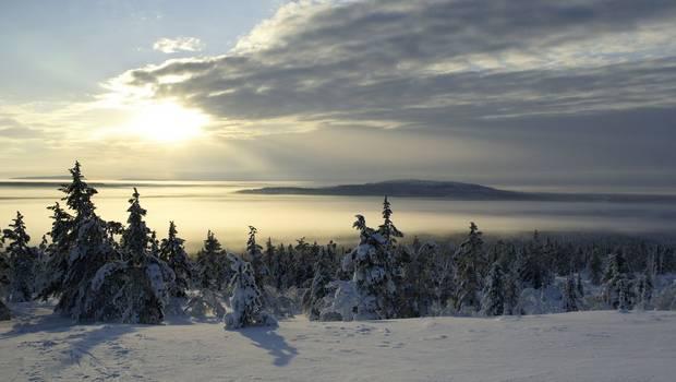 Jeris - Winter Cottage short break in Finnish Lapland