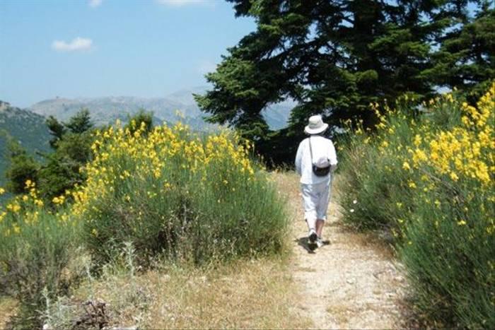 Mt Chelmos (Liz Savory)