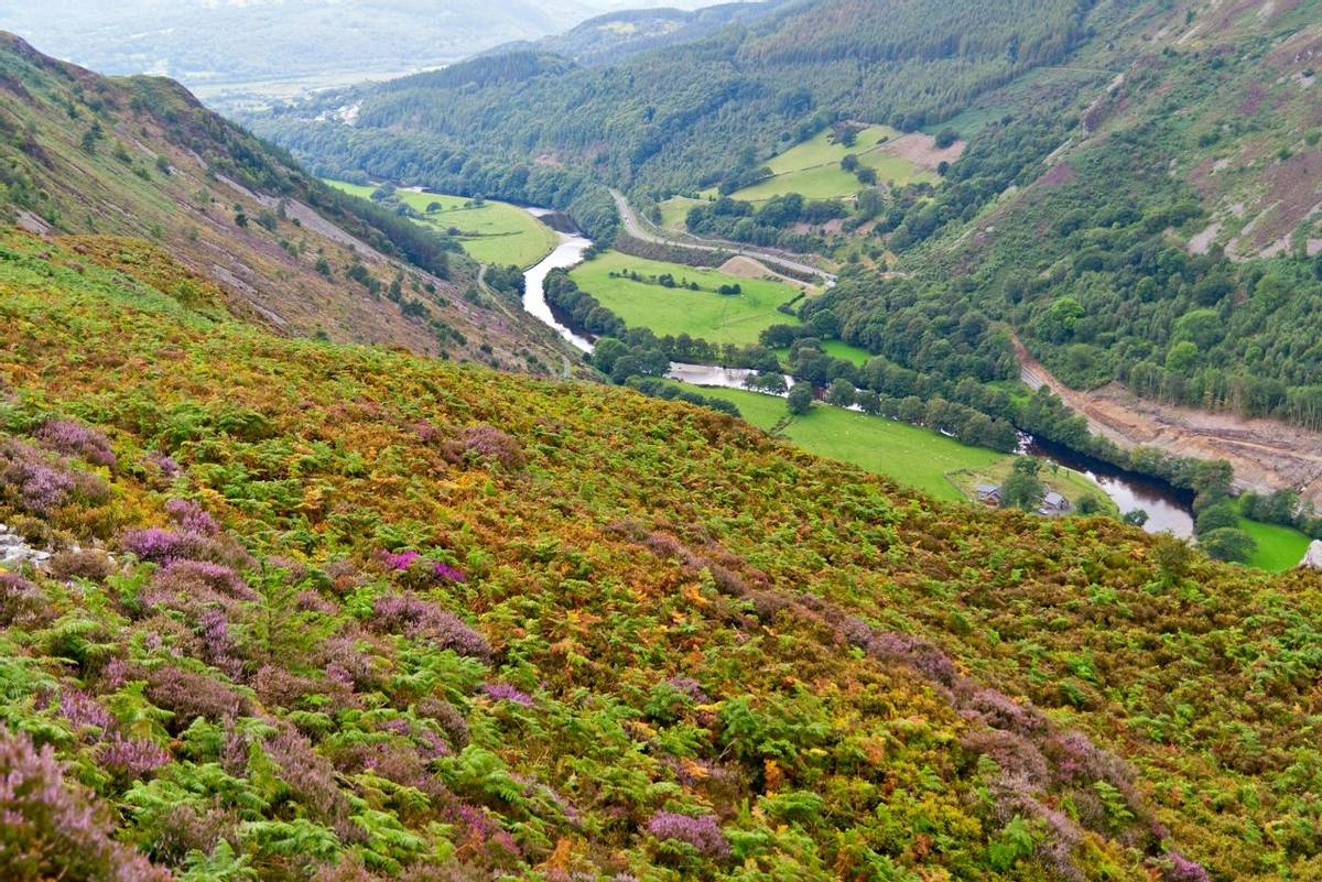 Snowdonia Way - Guided Trail - Precipice Walk Snowdonia - AdobeStock_35742933