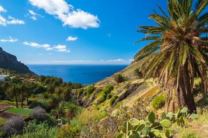 Canary Islands Shutterstock 162304904