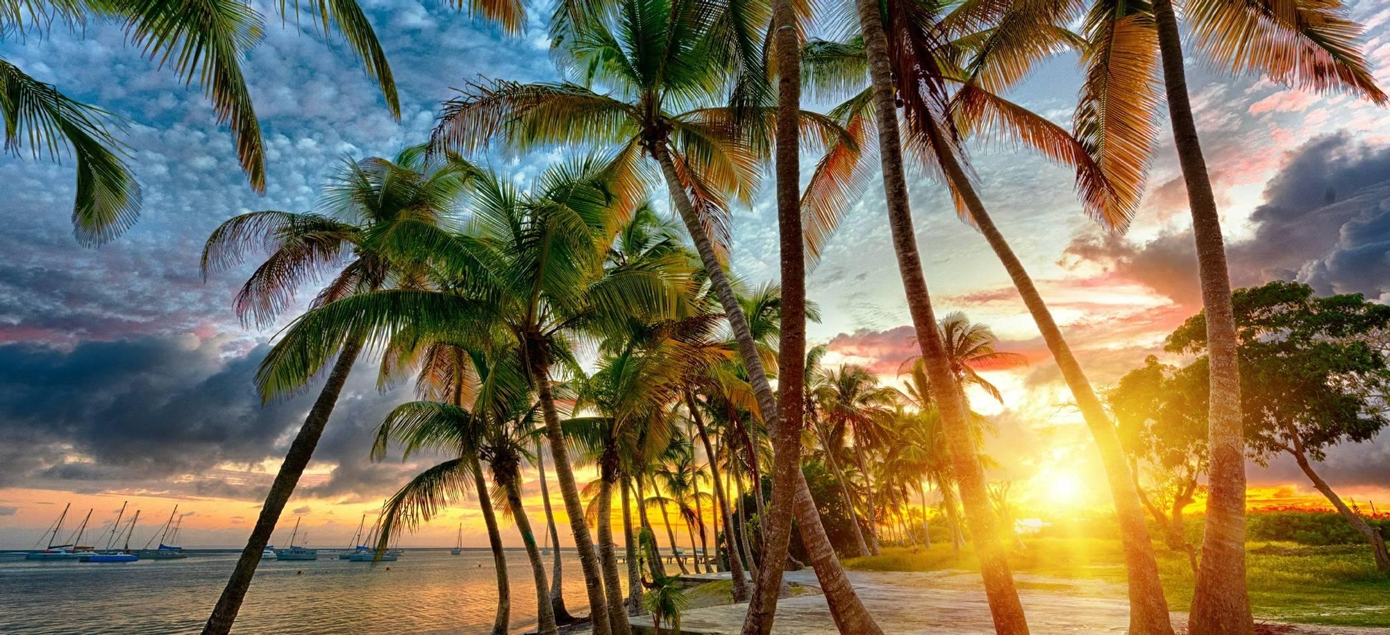 Itinerary Desktop - Day 7 - Guadeloupe v2.jpg
