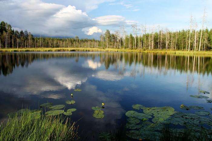 Lake view hide Kuhmo