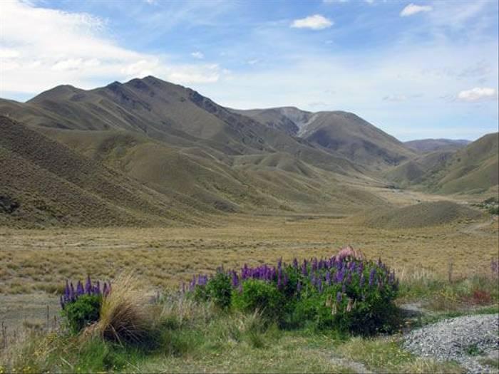 Lindis Pass (Steve Wakeham)