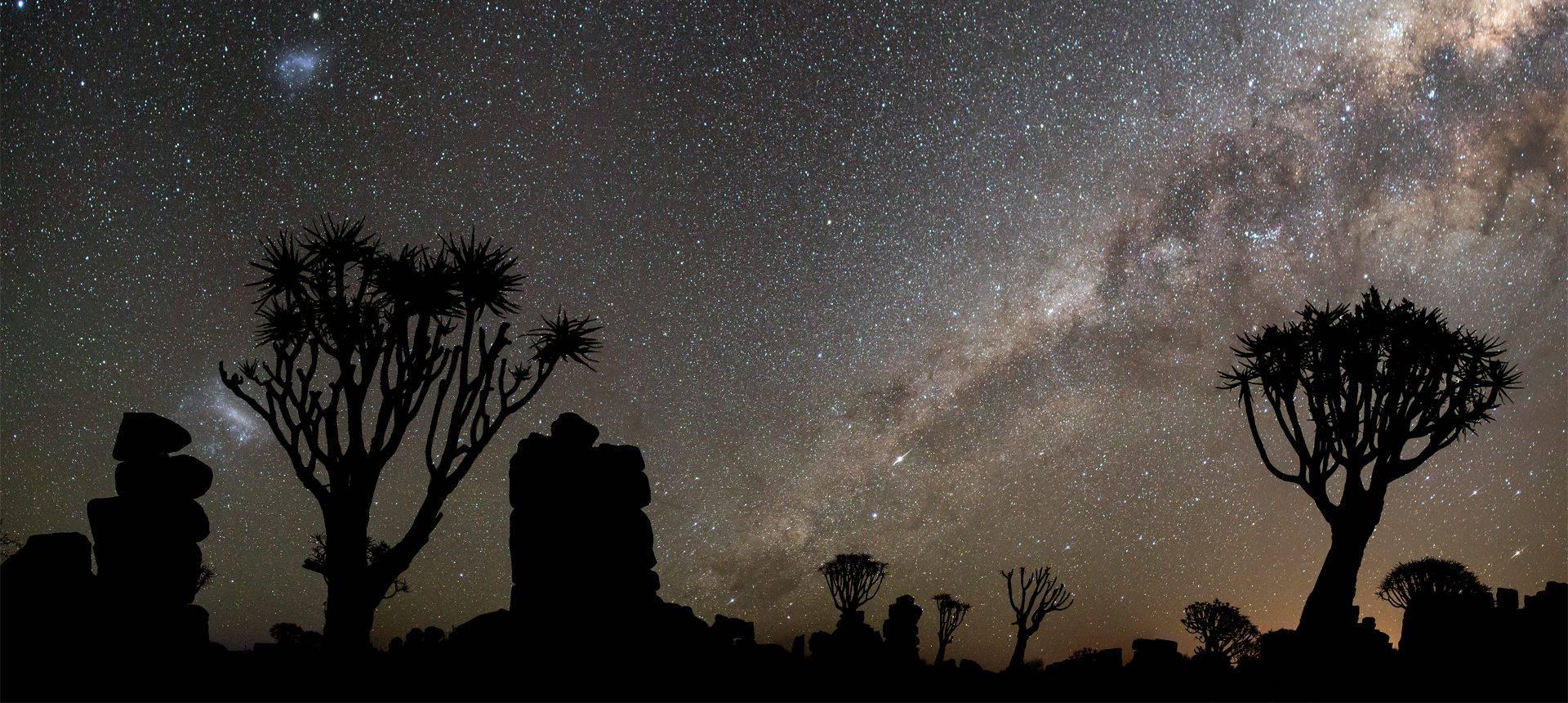 Quiver Trees And Three Galaxies, Mesosaurus Fossil Site, Keetmanshoop © R Harvey