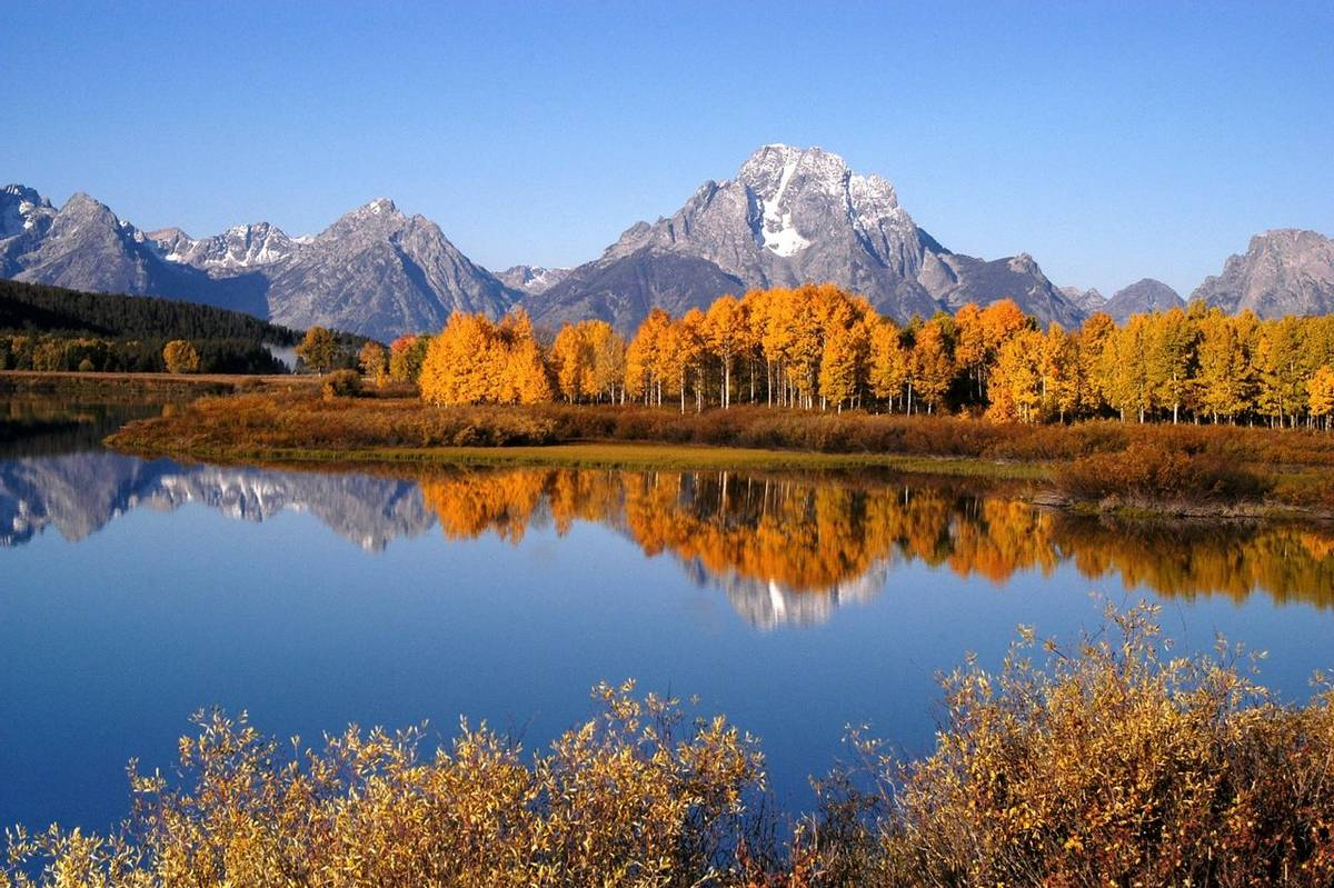 American Rockies - Oxbow Bend - AdobeStock_1137568.jpeg