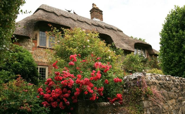 Amberley_cottage_roses.JPG