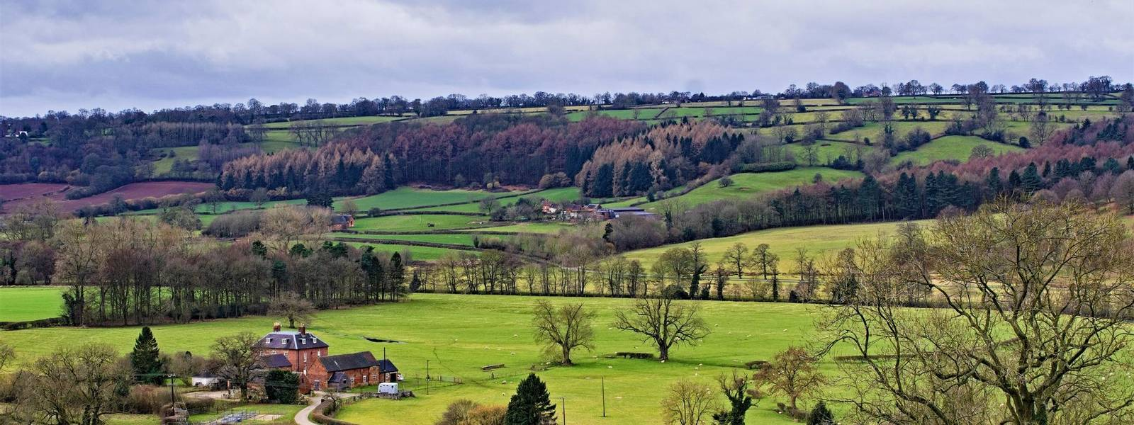 Dovedale - Peak District - Spring and Winter - AdobeStock_273181843.jpeg