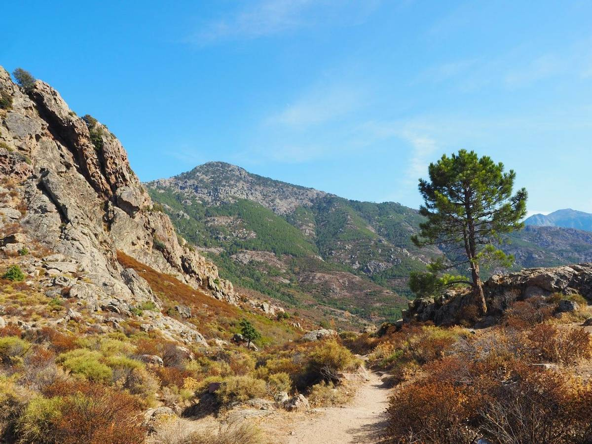 France - Corsica - AdobeStock_224374656.jpeg