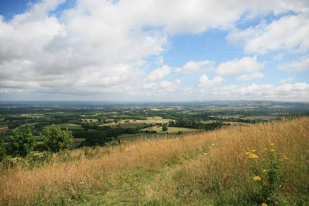 View NE from Chanctonbury Ring.JPG